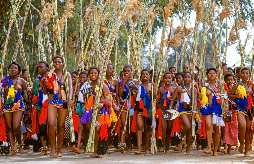 Swazi Girls with Reed Offerings