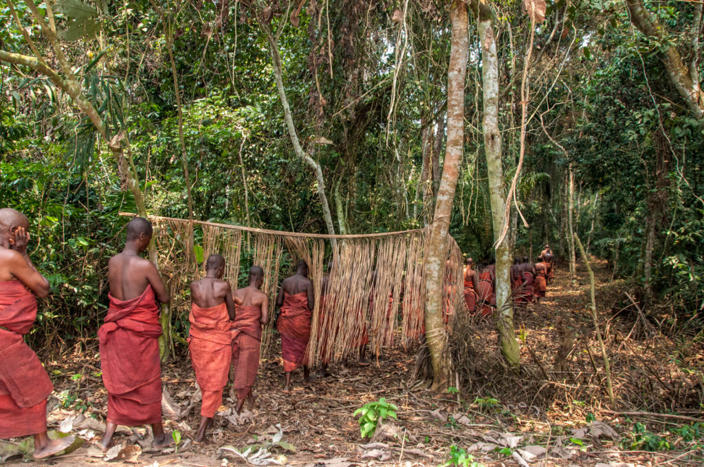 Kuba Female Members of the Royal Court Enter the Sacred Forest, DR Congo